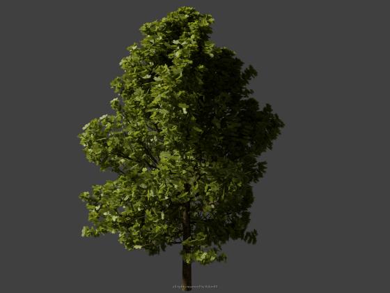 Baum, HighPoly