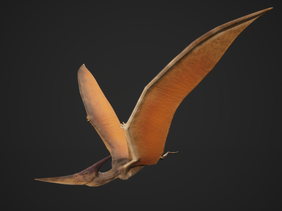 Pteranodon - Game Model -
