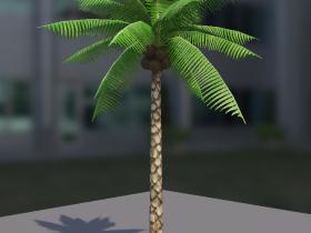 KokosnussPalme.png